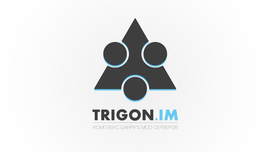 Каким должен быть Garry's Mod проект. История становления TRIGON.IM